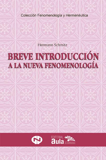 Breve introducción a la nueva fenomenología